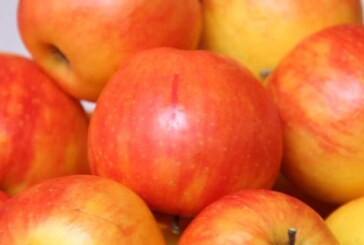 İthal domates, şeftali ve elmada limit üstü kalıntı