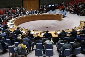 """BM Suriye'de 1 ay """"insani ateşkes"""" kararı aldı"""