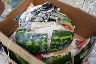 65 kilo uyuşturucuyu karpuzların içine gizlediler