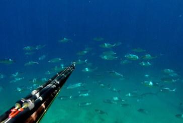 Kanunsuz balık avladıkları tespit edilen 2 kişi hakkında yasal işlem
