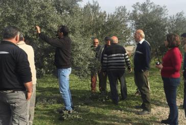 Tarım Dairesi eğitim çalışmalarına Gaziköy ile devam edecek