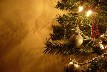 Yeni yıl ağacı çocuklar okusun diye süslendi