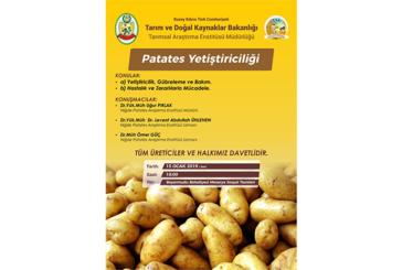 Türkiye'de geliştirilen yeni patates çeşitlerinin deneme ekimi yapılacak