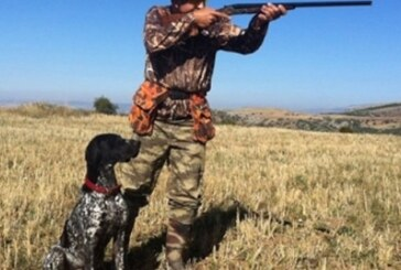 Avcılar tarafından açılan ateş sonucu sırtından ve yüzünden  yaralandı