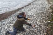 Kayıp Şahıslar Komitesi Bahçalar köyü plajında kazı başlattı