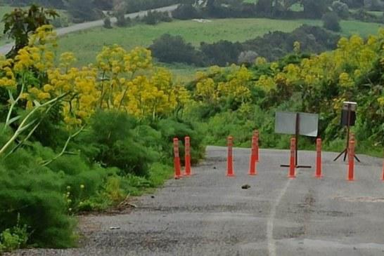 Karpaz bölgesindeki 15 köyde sokağa çıkma yasağı bir hafta daha uzatıldı