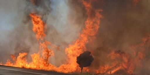 Çöpleri temizlemek amacıyla yetkili makamdan izinsiz olarak ateş yaktı