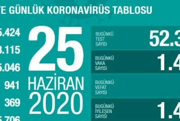 Türkiye'de koronavirüsü atlatan kişi sayısı 165 bin 706 oldu