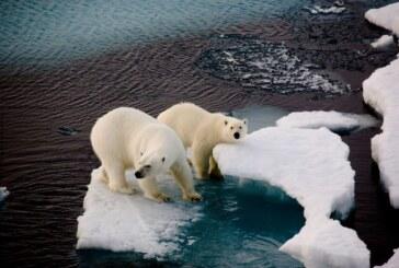 Bilim insanları uyardı: Felaketler domino etkisiyle ilerliyor