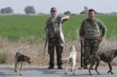 Büyük av sezonu pazar günü başlıyor. Avcılar 3 Ocak'a kadar  toplam 11 gün avlanabilecekler