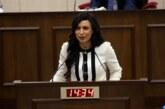 Özdenefe: Sayın Cumhurbaşkanı tarafından demokrasi ayaklar altına alınıyor…