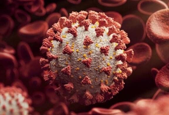 Hızlı bulaşan koronavirüs türü ABD'de de görüldü