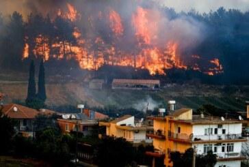 Türkiye, Yunanistan ve İtalya başta olmak üzere Akdeniz ülkelerinde yangınlar yayılıyor