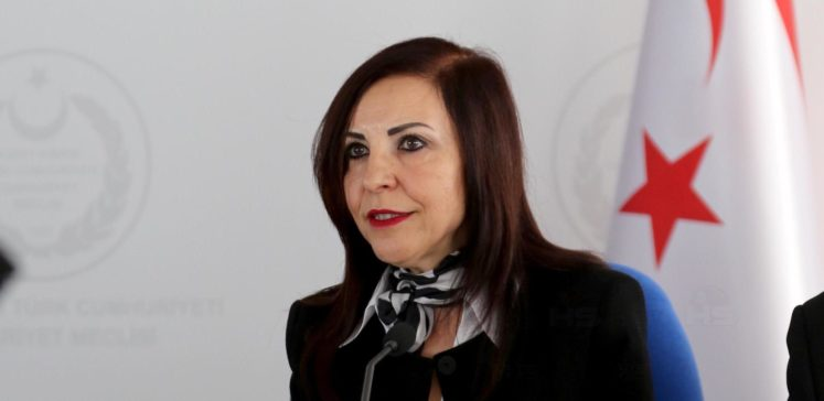 """Ombudsman: """"Talaykurt'un inşaatı izinsiz ve yasaya aykırı"""""""