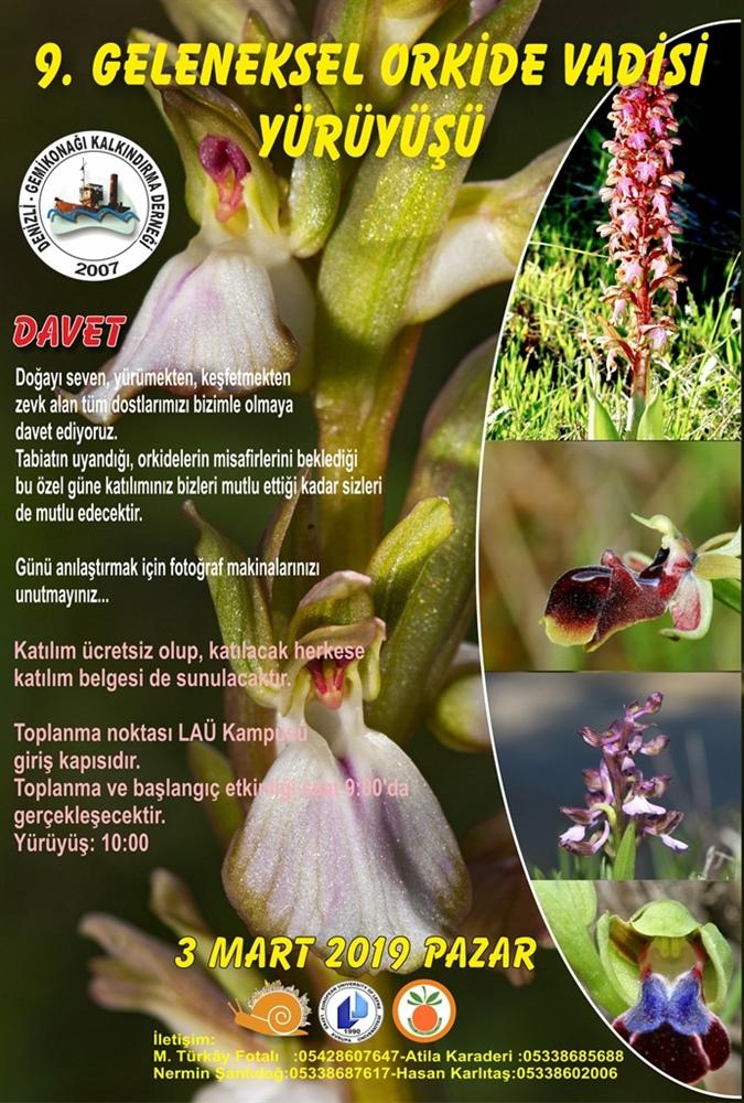 Orkide Vadisi Orkide Gözlem Yürüyüşü 3 Mart'ta gerçekleşecek