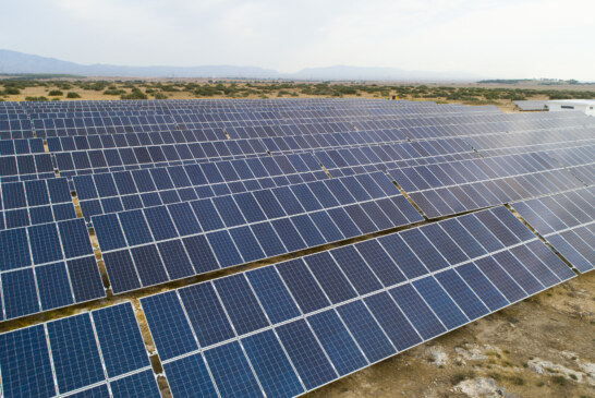 Döveç Group'tan doğaya ve enerjiye dev yatırım