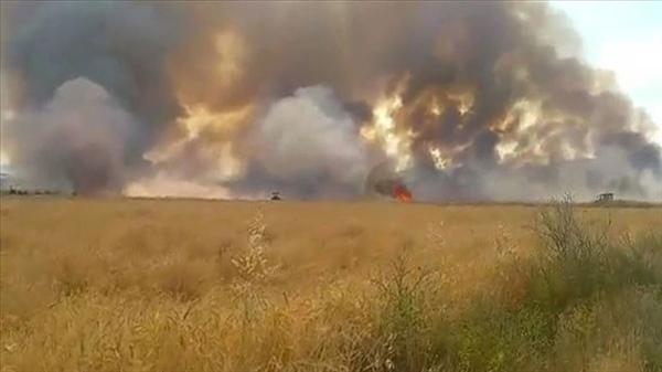 60 dönüm biçilmemiş arpa yanarak zarar gördü