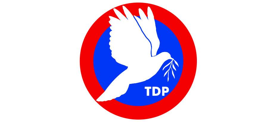 TDP'nin sunduğu 'Ev İçi Şiddet Yasa Tasarısı'nın ivediliği yarın Meclis'te oylanacak