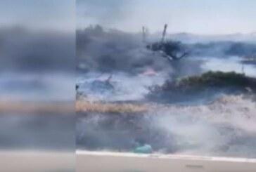 300 hektar orman zarar gördü