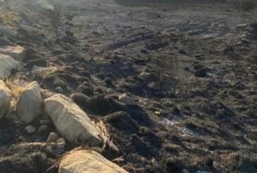 Büyükkonuk'ta şinyalar yandı
