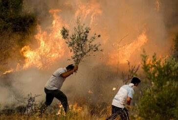 Sıcak çarpması, arazi ve orman yangınlarına dikkat